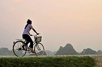 Woman cycling on a dike, Kenh Ga, Ninh Binh province, Vietnam