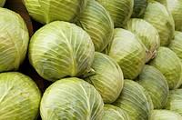 White cabbage (Brassica oleracea var. capitata f. alba on a market to sell Hamburg Germany