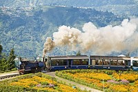 Steam train known as the ´Toy Train´ of the Darjeeling Himalayan Railway listed as a World Heritage Site, Batasia Loop, Darjeeling, West Bengal, India