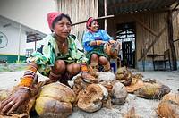 Kuna women selling coconuts, Panama