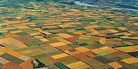 Agricultural patchwork Canterbury Plains near Rakaia aerial view New Zealand