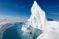 During the Arctic spring, the surface of the frozen arctic ocean begins to crack under stress especially around large frozen in icebergs which flex th...