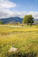 Praderas y vistas de la sierra de Madrid desde Moralzarzal, españa