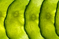 thin slices of cucumber lit from behind, overlapping in a line,