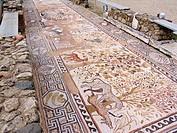 europe, macedonia, ruins of heraclea lyncestis, episcopal residence, mosaics