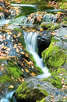 Autumn Waterfall with vibrant green Mossy Rocks