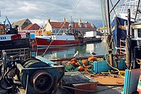 Eyemouth, Scottish Borders, Scotland, UK