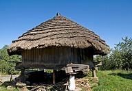 Horreo in Riodebangos,Lugo Province  Galicia  Spain