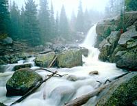 Alberta Falls in Spring Rain Rocky Mountain National Park Colorado USA