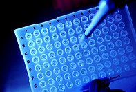 Research for drugs for the treatment of cancer and Parkinsons Disease.