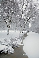 winter and snow in Amsterdam
