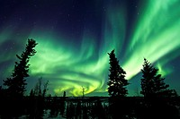 Aurora Borealis Northern Polar Lights over the boreal forest outside Yellowknife, Northwest Territories, Canada, MORE INFO The term aurora borealis wa...