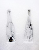 Two bottles of Champagne in the snow