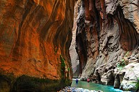 Two hikers ford their way upstream on the Virgin River at the Narrows at Zion National Park