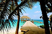 Indian Ocean, Maldives, South Ari Atoll, Dhidhoofinolhu, Diva Resort, Naiad,
