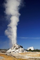 White Dome Geyser erupts against a clear blue sky