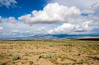 New Mexico Desert USA