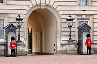 Guards of Buckingham Palace, London, England, UK
