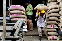 Loading sacks of grain at Chandni Chowk, Old Delhi