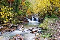Alba River. Redes Natural Park and Biosphere Reserve. Soto de Agues. Sobrescobio Council. Asturias. Spain.