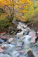 Route of El Alba. Alba River. Redes Natural Park and Biosphere Reserve. Soto de Agues. Sobrescobio Council. Asturias. Spain.