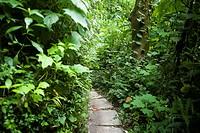 Parque del Pensamiento, Manizales, Colombia