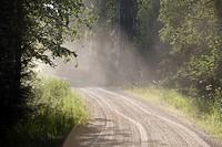 Dust flying over dry dirt road  Location Suonenjoki Finland Scandinavia Europe