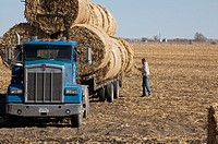 Lexington, Nebraska - A worker loads bales of hay on a truck in a farm field