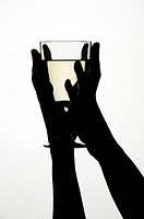 Woman´s hands holding a glass of white wine