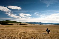 Nomad rider in the steppes of Northern Mongolia