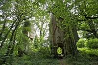 Castle has rustephan, Nizon Morbihan, Brittany, France