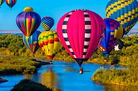 Hot air balloons flying low over the Rio Grande River just after sunrise, Albuquerque International Balloon Fiesta, Albuquerque, New Mexico USA