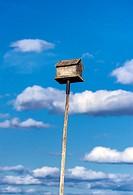 Birdhouse on a tall pole