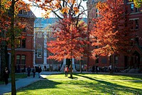 Scenics of Harvard Yard, the central campus of Harvard University, in Indian Summer Fall.