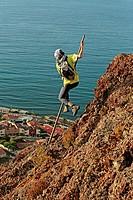 Canarian shepherd jump
