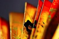 Chinese / oriental fan in evening light.