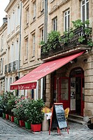Terrace. Bar-Cave de la Monnaie. The greedy street. Bordeaux. Gironde. Aquitaine. France. Europe.