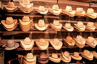 Display of straw Stetson cowboy hats in row, Cody, Wyoming, USA.