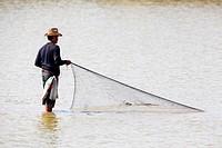 Fisherman throwing his net in the mudflats at lowtide. Laem Pak Bia. Petchaburi province. Thailand.