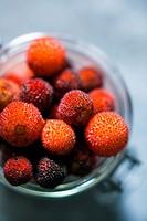Arbutus berries.