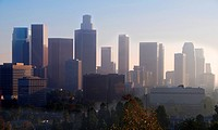 view of downtown los Angeles in the evening.