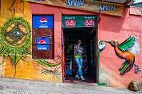 Street art murals in Cerro Polanco. Valparaíso, Chile, South America.