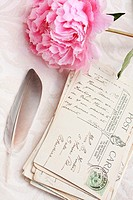 Beautiful pink peony with old postcards romantic background.