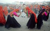 Hindu women performing a traditional dance. Kachchh region ( Gujarat, India). They belong to the Ahir caste.