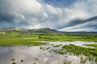 Lamar River Valley, Yellowstone National Park Wyoming.