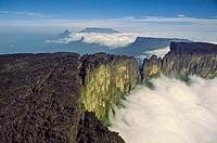 Summit of Cukenan-tepuy in the Gran Sabana, Canaima National Park, Bolivar state. Venezuela.