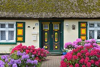 Typical house with typical front door, Village Born, Darss, Fischland-Darss, Baltic sea, Mecklenburg-Western Pomerania, Germany, Europe.