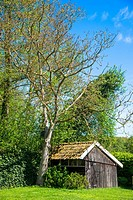 old shed hidden between trees and grasslands at eastern holland