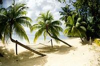 Tropical island beach with hammock at Matangi Island Resort, Fiji.