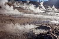 El Tatio geysers, Atacama desert. Region de Antofagasta. Chile.